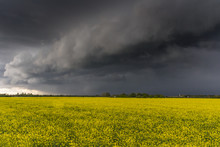 A Weather Front Rolls In Across Rapeseed Fields In Lechlade, Gloucestershire, UK