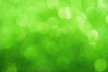 Fresh Green Bokeh Lights Abstract Background