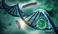 DNA Structure And HIV-infected