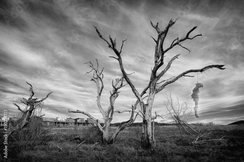 Fototapeta  Ghostly Hangman