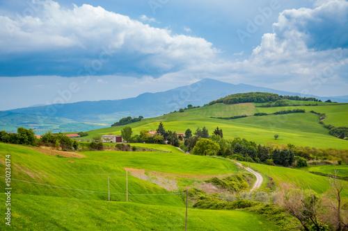 Fotobehang Rijstvelden Paysage du Val d'Orcia en Toscane