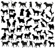 A Collection Of Dog Silhouettes, A Large Collection