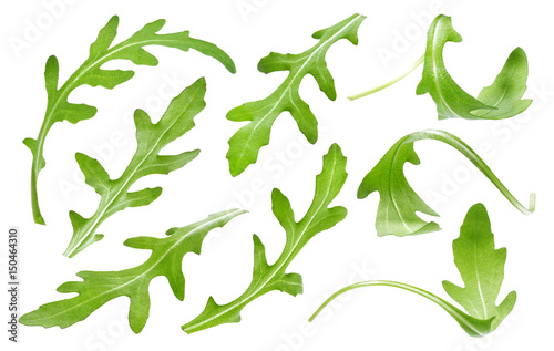 Photo Ruccola leaf isolated on white background, single green arugula leaves collectio