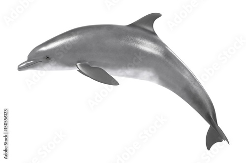 Photo realistic 3d render of bottlenose dolphin