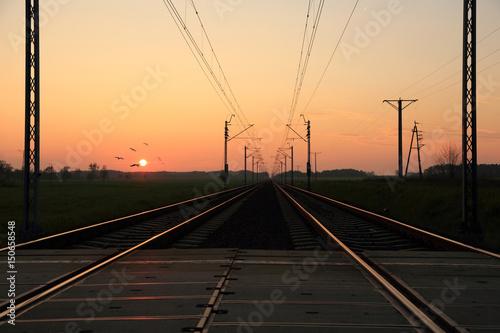 Valokuva  Linia kolejowa o zachodzie słońca, stado ptaków.