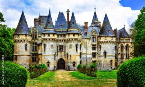 Foto op Plexiglas Kasteel Impressive fairy tale castles of France, il de france region