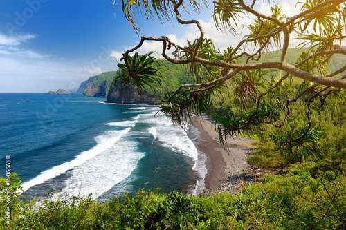 Foto op Canvas Restaurant Stunning view of rocky beach of Pololu Valley, Big Island, Hawaii