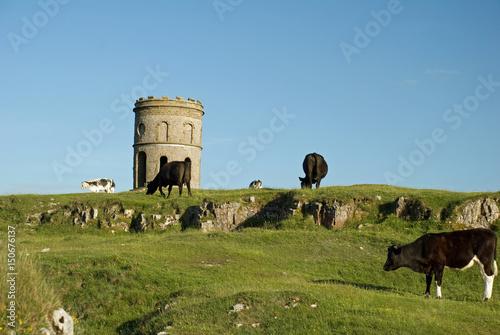 Solomons Temple, Buxton фототапет