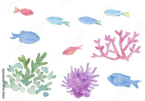 熱帯魚 珊瑚 イソギンチャク 水彩イラスト Buy This Stock Illustration And Explore Similar Illustrations At Adobe Stock Adobe Stock