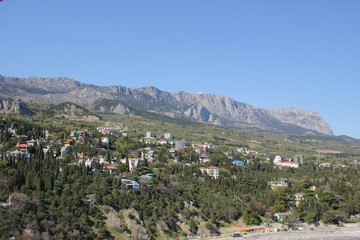 Fototapeta na wymiar Crimea.the nature of Simeiz
