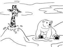 Giraffe And Polar Bear