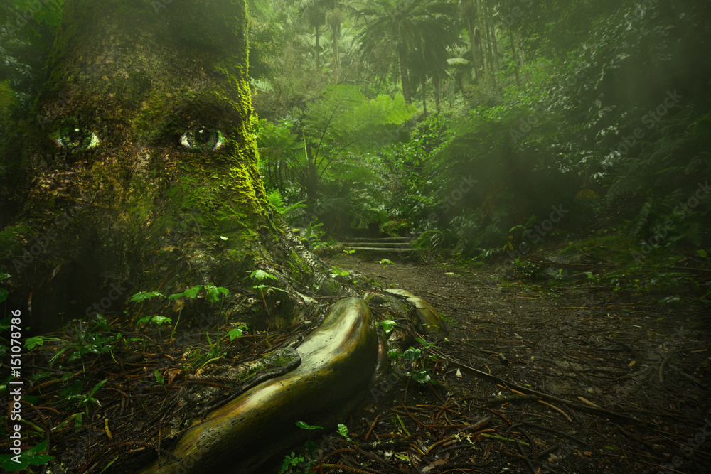 Fototapeta big tree with eyes in tropical mysterious green forest with fairytale light. live nature concept