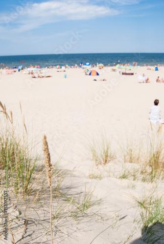 Photo  Beach sunny day baltic gdynia