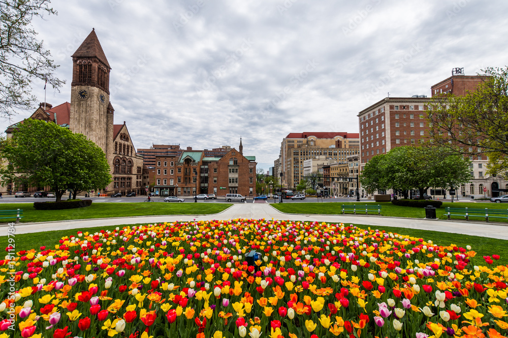 Fototapety, obrazy: Capitol Building Area in East Capitol Park in Albany, New York