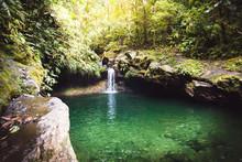Piscine Naturelle En Forêt - Guadeloupe