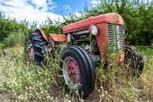 Red Old Tractor With Rust In Tall Weeds And Grass
