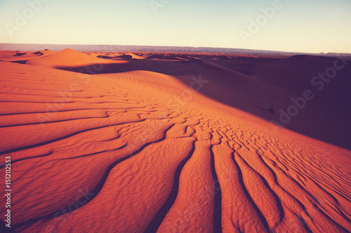 Poster de jardin Desert de sable Sand dune