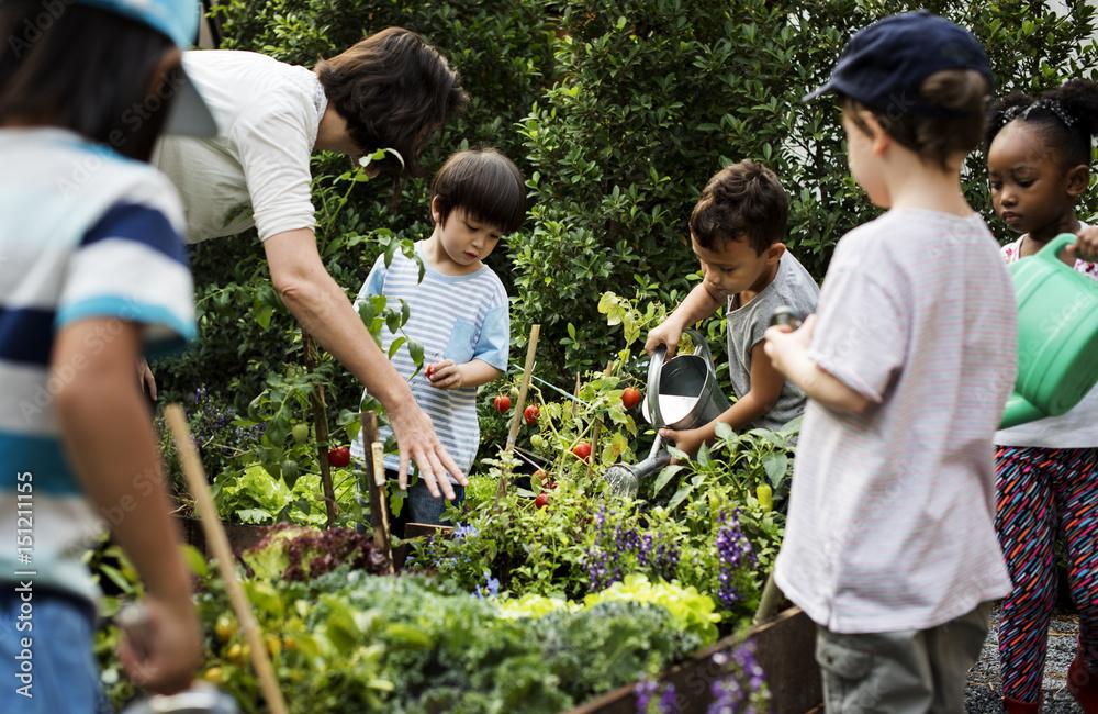 Fototapety, obrazy: Teacher and kids school learning ecology gardening