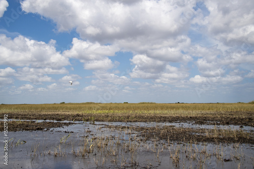 Everglades swamp channels without mangroves, Miami, USA Fototapeta