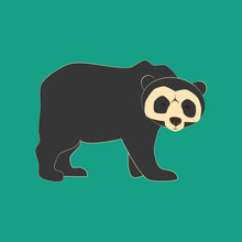 Spectacled Bear Animal Illustr...