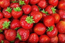 Strawberry. Full Frame Strawberry Background.  Fresh Organic Berries
