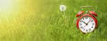 Summer Time Concept - Website ...