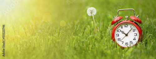 Summer time concept - website banner of a red alarm clock and dandelion flower Canvas Print