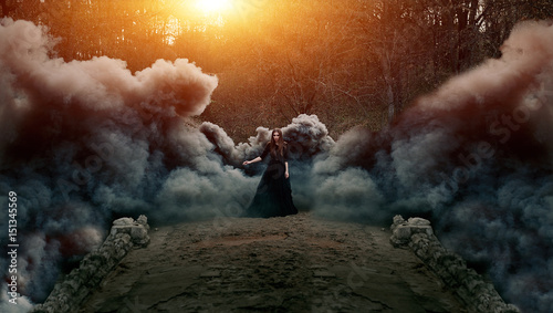 Fotografie, Obraz  Young attractive Witch walking on the bridge in heavy black smoke