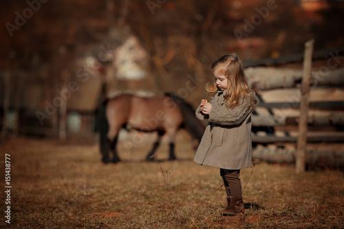Fotografie, Obraz  Portrait of little girl with her pony