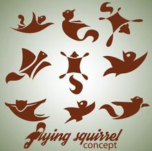 Flying Squirrel Design Concep...