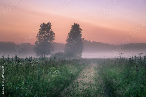 Foto op Aluminium Zalm Landscape with mist and fog at summer night in Finland