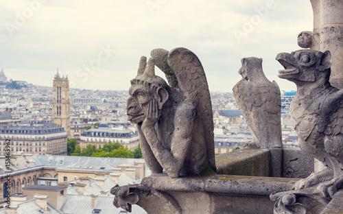 Fotografia Notre-Dame Cathedral's Chimera