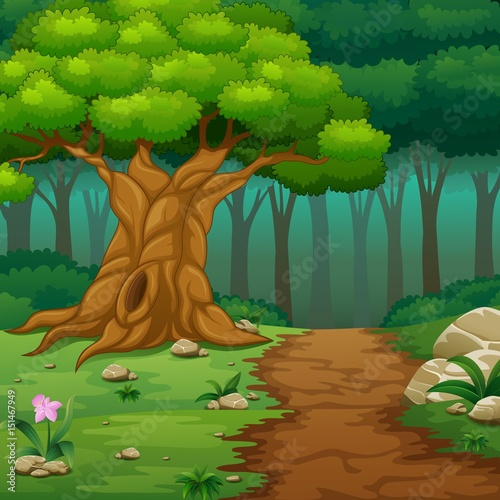 Autocollant pour porte Forets enfants Forest background with dirt road