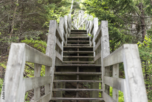 Staircase, Fundy National Park, New Brunswick, Canada Wallpaper Mural