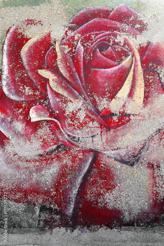 Faded image of big red garden rose flower. Kas-Lycia-Turkey. 1759 © rweisswald