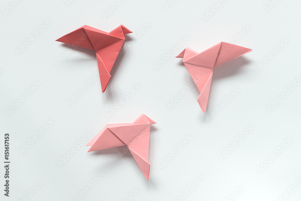 Fototapeta Pink Birds of different shades. Origami. The concept of freedom, inspiration.
