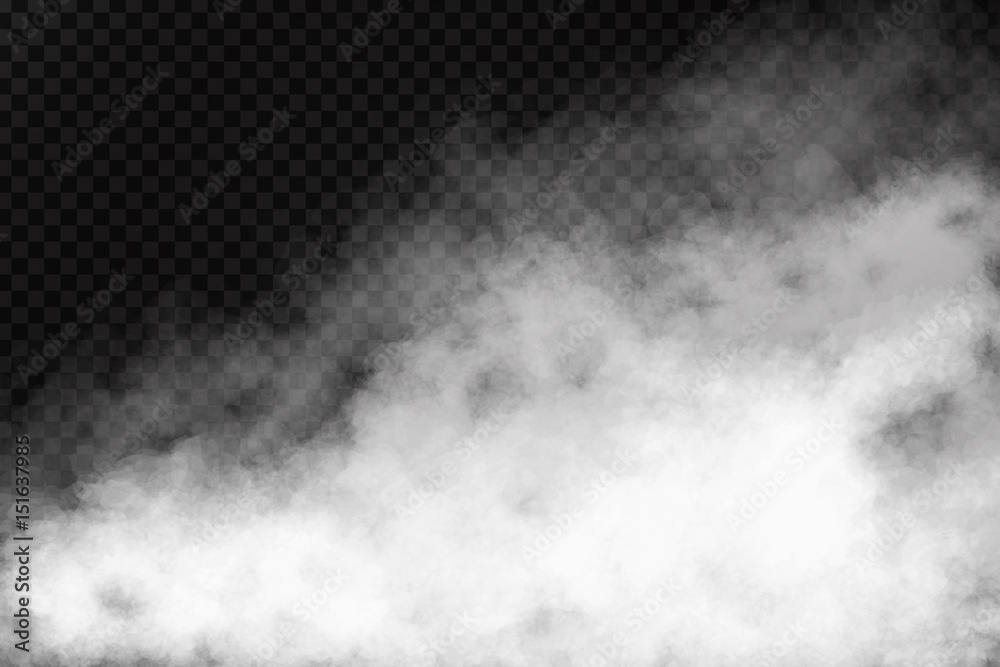Fototapety, obrazy: Vector realistic isolated smoke effect on the transparent background. Realistic fog or cloud for decoration.