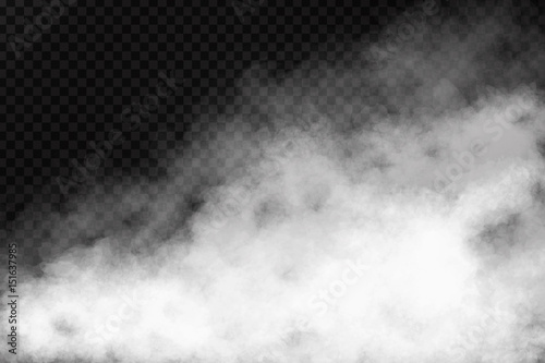Deurstickers Rook Vector realistic isolated smoke effect on the transparent background. Realistic fog or cloud for decoration.