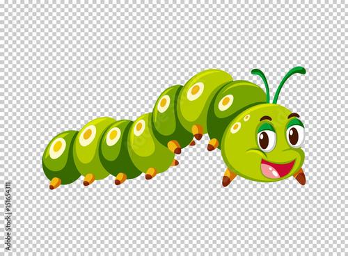 Fotografía  Caterpillar in green color
