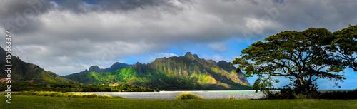 Plakat Hawaje