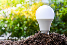 LED Bulb Is Growing From The Soil For Saving Concept