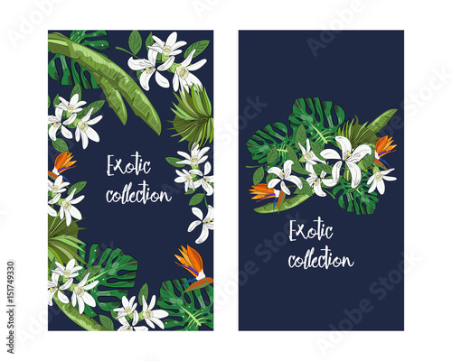 Vector Tropical Banner With Leaves And Flowers Design For Packaging Tea Shop Drink Menu Homeopathy And Health Care Products Exotic Collection Buy This Stock Vector And Explore Similar Vectors At Adobe