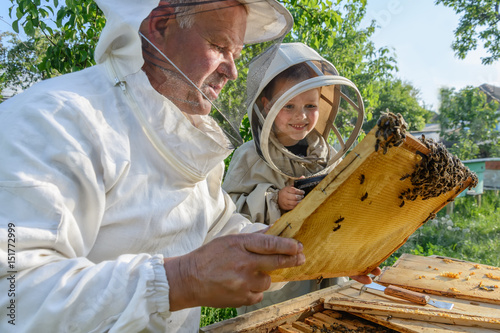Photo Experienced beekeeper grandfather teaches his grandson caring for bees