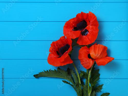 Foto op Canvas Klaprozen Red poppy on wood