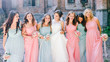 canvas print picture - Beautiful bride with her pretty bridesmaids