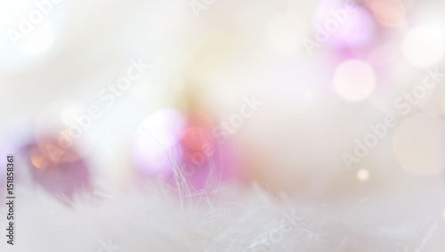Fotografie, Obraz  White and pink with soft fur, flares, bokeh, blur background