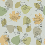 Seamless pattern with forest owls on a background of leaves - 151871321
