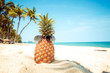 Hipster pineapple with sunglasses on a sandy beach with palm tree. concept of fashion in summer. vintage colortone filter effect