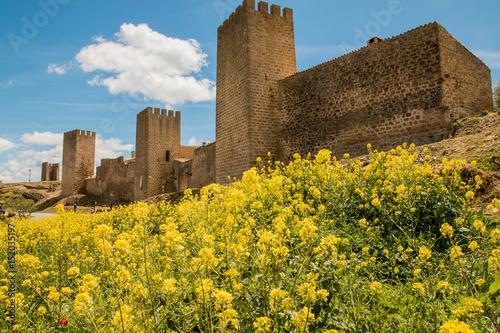 Ciudadela en Artajona (Navarra)