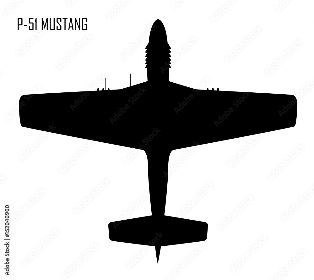 Fototapety, obrazy: World War II - North American P-51 Mustang